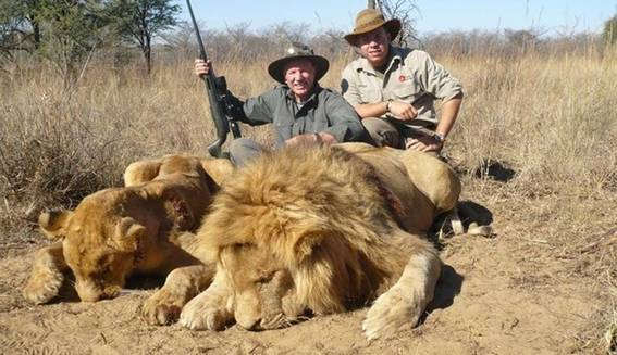 caza-leones-medium.jpg