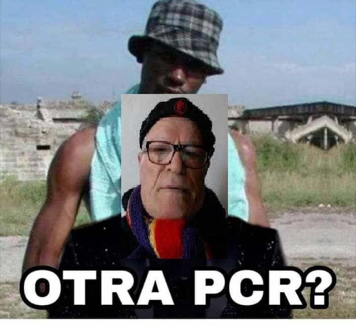 dabuti_pcr.jpg